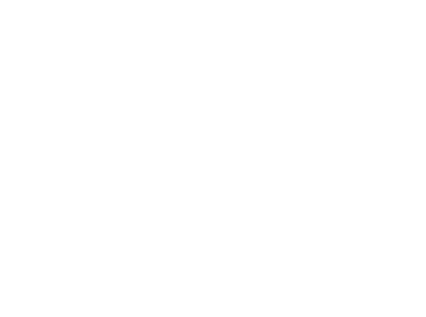 RockVision